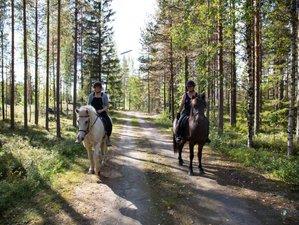 7 Days Taiga Horse Riding Holiday in Svansele, Swedish Lapland
