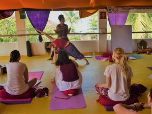 28 Days 200 Hours Multi-Style Yoga Teacher Training in Dharamsala