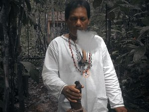 6 Day Ayahuasca Spiritual Retreat with Peruvian Shaman in Malaga