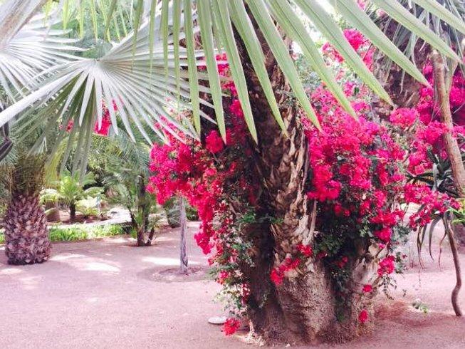 7-Daagse Meditatie, Cultuur, en Yoga Vakantie in Marokko