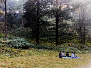 4 Day Himalayan Meditation Retreat with Kriya Yoga and Pranayama in Nainital, Uttarakhand
