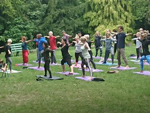3 Days Mindfulness Meditation Chi Gong And Yoga Retreat In Uk Bookmeditationretreats Com