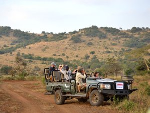 5 Days Best of Kruger and Blyde River Canyon Safari South Africa