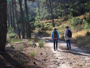 8-Daags Meditatie, Natuur en Wildernis Retreat in Alicante