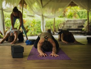 100-Hour Yoga Teacher Training
