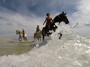 8 Day Incredible Beach, Mountain and National Park Horse Riding Holiday in Tarifa, Andalusia