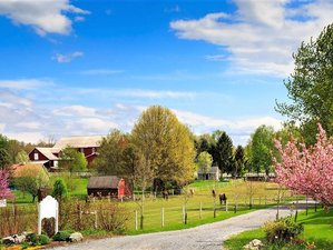 4 Day Yoga Retreat at Countryside Farm in Hershey, Pennsylvania