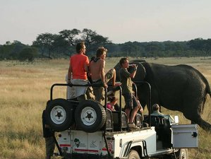 22 Days Walking Safari South Africa, Zambia, Malawi, and Mozambique