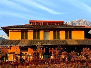 4 Day Self-Love Yoga and Meditation Retreat in Himalayas, Palampur (HP)