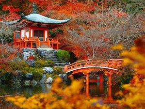 7 Days Sacred Mythic Journey Mount Fuji, Japan