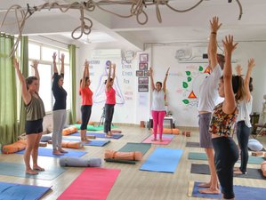 11 Day 100-Hour Holistic Yoga Therapy Teacher Training Course in Rishikesh