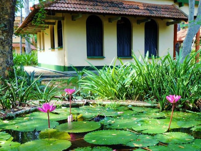10 Days Yoga and Meditation Retreat in Auroville, India