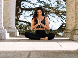 6 Day Online Pranayama and Meditation Course