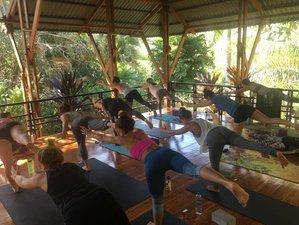 14 Day 200 Hour Vinyasa Yoga Teacher Training Certification with Intensive Immersion in Montezuma