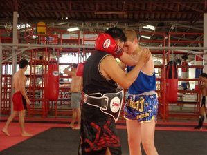 1 Week Intensive Muay Thai Training in Thailand