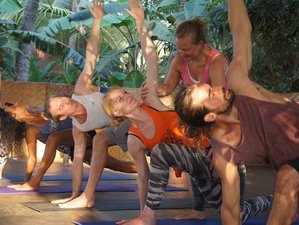 36 Days 300hr Advanced Yoga Teacher Training in Spain
