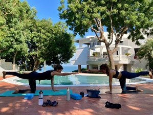 26 Day 200-Hour Hatha Vinyasa Yoga and Energy Teacher Training in Barranquilla, Atlantico