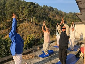 10 Day Meditation & Yoga Retreat in McLeod Ganj, Upper Dharamsala