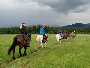 4 Day Guided Family-Friendly Horseback Riding in Yukon