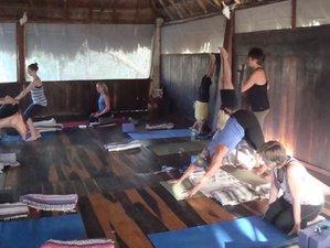 7 Days Intermediate Level Winter Yoga Retreat in Mexico