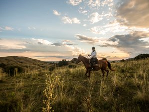 7 Days Discover the Beauty and Peacefulness of Pampas Horse Riding Holiday in Lavalleja, Uruguay