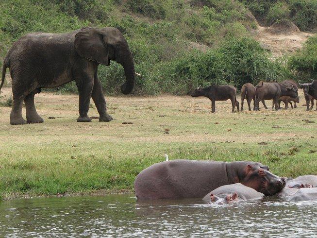 5 Days Uganda Safari Tour