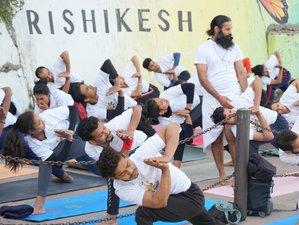 32 Day 300-Hour Multi-Style Yoga Teacher Training Course in Rishikesh, Uttarakhand