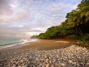 7 Days Luxury Jungle Yoga Retreat~ Costa Rica