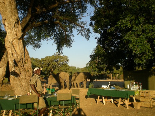 4 Days Walking Safari in Zimbabwe