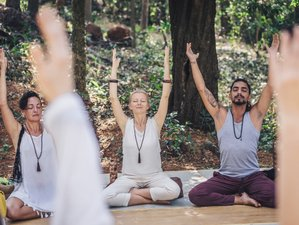13 Day 100 Hours Yin Yoga Therapy Teacher Training in Ubud, Bali