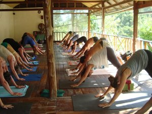 7 Days Ashtanga Yoga Retreat in Mozambique
