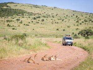 7 Days Exceptional Kenya and Tanzania Safari