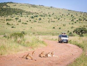 7 días de excepcional safari en Kenia y Tanzania