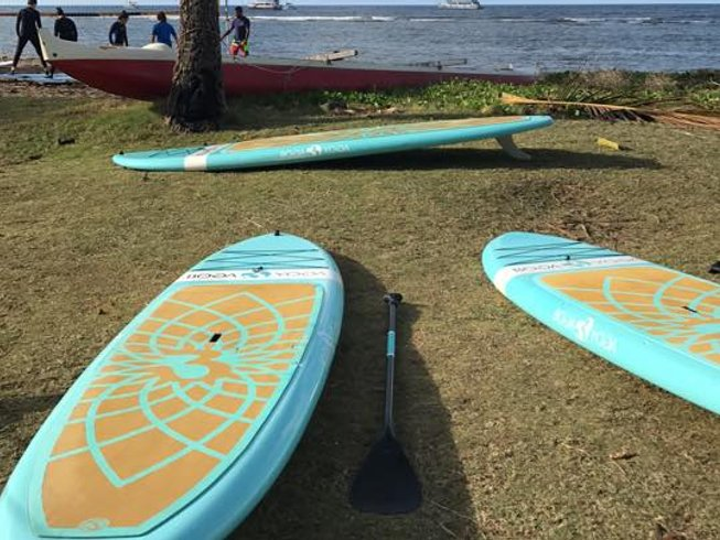 3 Days Paddleboard Yoga Teacher Training in Florida Keys