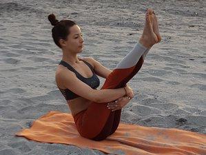 22 Days 200-Hour Intensive Yoga Teacher Training in Boca Raton, Florida, USA