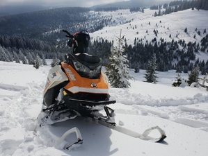 3 Days Amazing Guided Snowmobile Tour in Dracula's Land, Romania