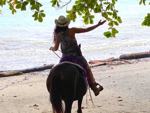 8 Day Joy Full Moon Vision Journey with Equine Gestalt Coaching and Horse Riding in Cabuya