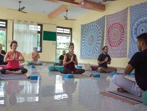 Self Paced 300-Hour Online Vinyasa & Ashtanga Teacher Training