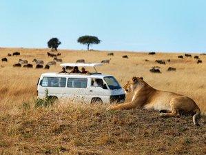 8 Days African Adventure and Safari in Uganda