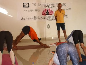 24 Days 200 Hr Ashtanga Vinyasa Yoga Teacher Training in Rishikesh, India