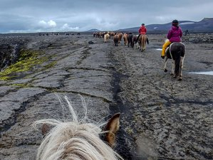 7 Day Hekla Wilderness Horseback Riding Holiday in Hvolsvöllur, Rangárþing eystra