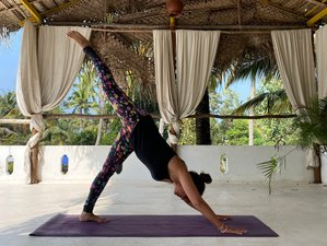 8 Day Suitable For Beginners Yoga Retreat in Varkala