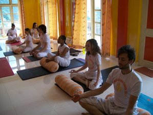 10-Weekse 500-urige Yoga Docententraining, India