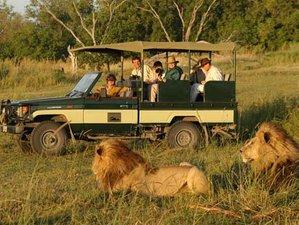 3 Days Budget Safari in Masai Mara, Kenya