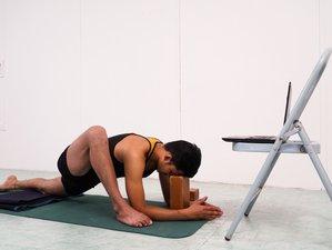Self-Paced Transforming Your Life Online 85 Hour Yin Yang Yoga Teacher Training
