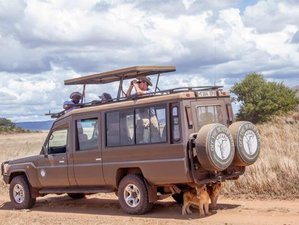 12 Days Northern Circuit Safari and Zanzibar Holiday Package in Tanzania