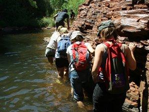 22 Day Overland Safari in Australia from Perth to Darwin