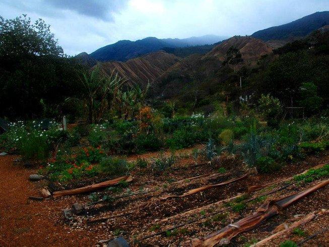 27-Daagse Permacultuur Onderdompeling Yoga Retraite in Vilcabamba, Ecuador