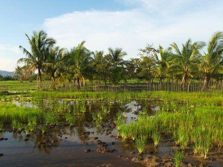 Krong Kampot District