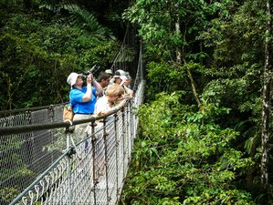 9 Day Wildlife Expedition in Costa Rica